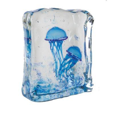 Aquarium Jellyfishes